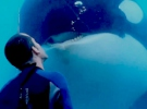 BlackFish — Trailer