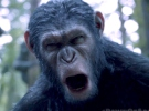 Dawn of the Planet of the Apes — First Film Clip