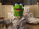 Muppets Most Wanted — TV Spots