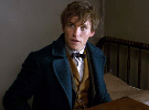 Fantastic Beasts and Where to Find Them — Teaser Trailer