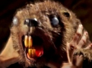 Zombeavers — New Trailer