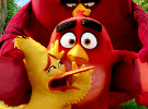 The Angry Birds Movie — International Trailer