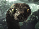 The Jungle Book - IMAX Trailer