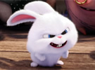 The Secret Life of Pets - New Trailer: 'Meet Bunny'