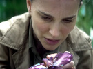 Annihilation — Official Trailer