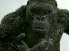 Kong: Skull Island — TV Spots