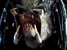 The Predator — Final Trailer