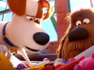 The Secret Life Of Pets 2 — Official Trailer