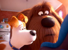 The Secret Life Of Pets 2 — Official Final Trailer